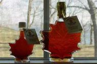 Maple leaf shaped bottles of syrup on window ledge